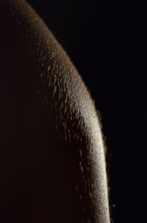 textura 14